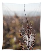 Ice Crystals On Dried Wild Flower Tapestry