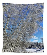 Ice Laden Birches Tapestry