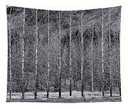 Iceland Landscape # 10 Tapestry