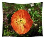 Iceland Poppy Tapestry