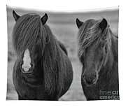 Icelandic Horses Duo Bw Tapestry