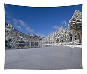 Icy Cold Tapestry