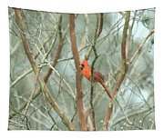 Img_1273-003 - Northern Cardinal Tapestry