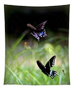 Img_1521 - Butterfly Tapestry
