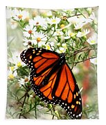 Img_5284-001 - Butterfly Tapestry