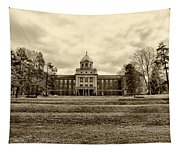 Immaculata University In Black And White Tapestry