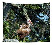 Immature White Ibis Tapestry