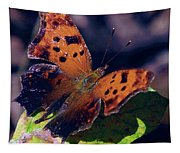 Imperfect Satyr Comma Tapestry