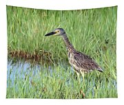 In Tall Grasses Tapestry