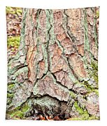 In The Forest Art Series - Tree Bark Patterns 1  Tapestry