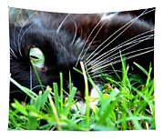 In The Grass Tapestry