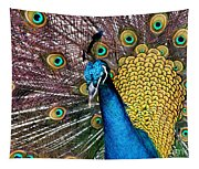Indian Blue Peacock Tapestry