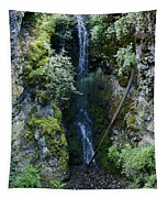 Indian Canyon Waterfall Tapestry