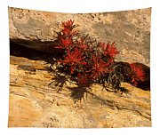 Indian Paint Brush Tapestry