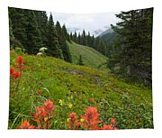 Indian Paintbrush Window Into The San Juans Tapestry