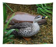 Indian Spot-billed Duck Tapestry