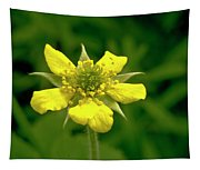 Indian Strawberry Flower Tapestry