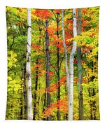 Indian Summer Tapestry