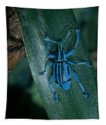 Indigo Blue Weevil Tapestry