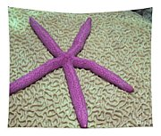 Indonesia, Pink Sea Star Tapestry