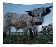 Inquisitive White High Park Cow Tapestry
