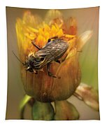 Insect - Bee - Dare To Bee Different Tapestry