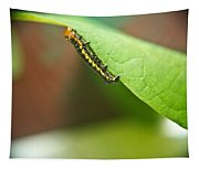 Insect Larva 2 Tapestry