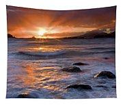 Inspired Light Tapestry