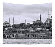 Instanbul In Black And White Tapestry
