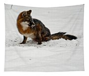 Intent Red Fox Tapestry
