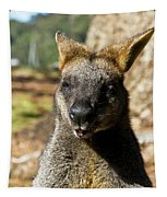 Interview With A Swamp Wallaby Tapestry