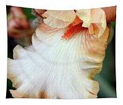 Into Iris Tapestry