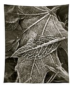 Intricately Frosted Tapestry