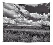 Iowa Cornfield Tapestry