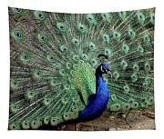 Iridescent Blue-green Peacock Tapestry