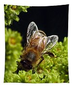 Iridescent Wings Tapestry