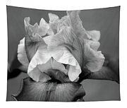 Iris 6622 H_4 Tapestry