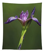 Iris At The Manor Tapestry