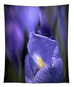 Iris Glow Tapestry