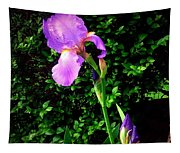 Iris In Sunshine Tapestry