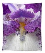 Iris Lashes Tapestry