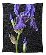 Iris On Black Leather Tapestry