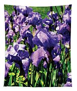 Irises Princess Royal Smith Tapestry