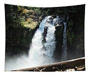 Ironhead Falls Tapestry