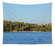 Island Off Of Cedar Key Tapestry