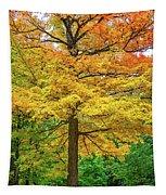 It You've Got It, Flaunt It Tapestry