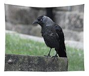 Jackdaw - Stare Tapestry
