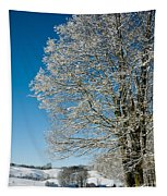 Jenne Farm Winter In Vermont Tapestry