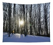 Jesyca's View Tapestry