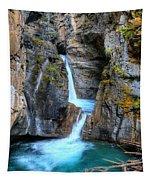 Johnston Canyon Falls Hike Upper Falls II Tapestry